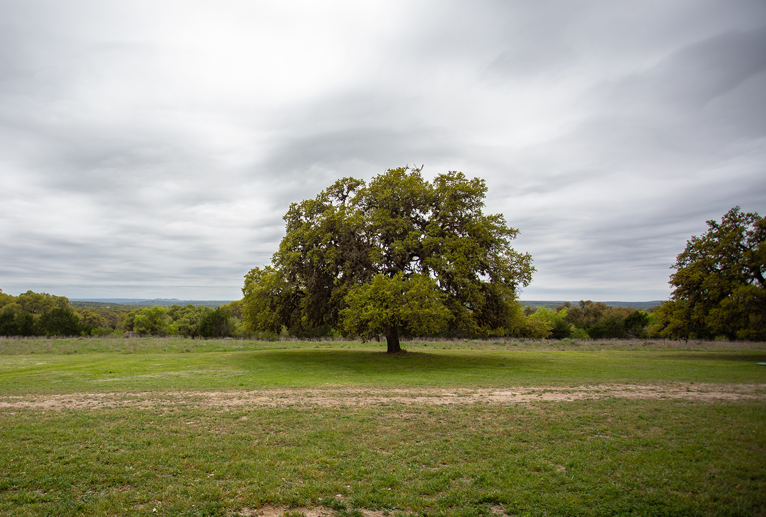 Celebrating Earth Day Throughout the Year – Hill Country Conservancy